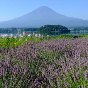 富士山(8/3 m)