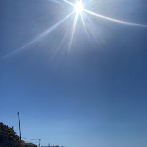 見ると運がよくなる「太陽光の花」の写真〜すべてのよきことが叶っていく!