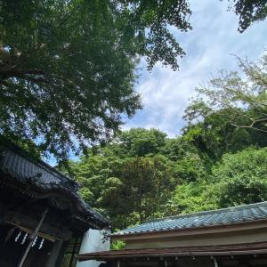 あなたの魂の望みが叶っていきますように〜鎌倉の神社に参拝しました