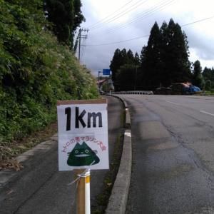 鮭川村 トトロの里マラソン大会に挑戦!【超絶アップダウン10km】