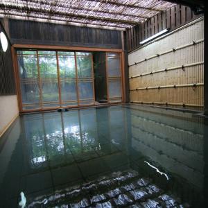 【阿蘇市】内牧温泉 湯巡追荘~茶色い湯の花舞う癒し空間!贅沢な広さの大浴場