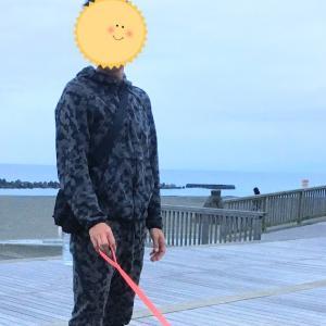 秋田犬は足が長い‼️