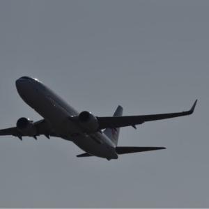 """""""世界自然遺産号""""日本トランスオーシャン航空(JTA) JA11RK   チョット小さくて見えるかなぁ❓"""