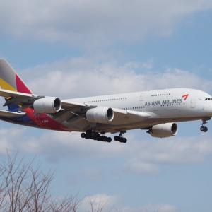 巨大機A380は何故生産中止の憂き目にあった❓ 乾さん遠征の成田空港 さくらの山でのショットシーン No.1 流石成田や‼️