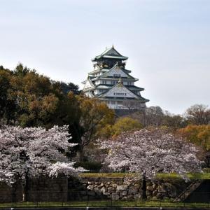 桜❗️ 思い出のプレイバックシーン ‼️ 大阪城周辺&夜桜シーン❣️