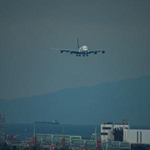 プレイバックシーン✈️タイ国際航空A380 06/R アプローチ遭遇&チャイナエアライン ジャンボ60周年ロゴ塗装機飛来🛫