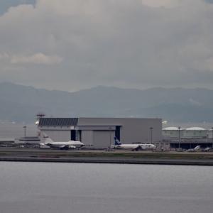 プレイバックシーン✈️ 06/L 2機のゴーアラウンド 発生‼️ベトナム航空Boeing787-10 100機目ロゴ入り飛来🛫