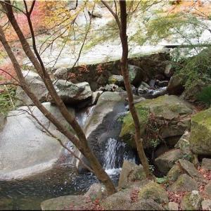 11/22(金)は、紅葉を求めて「三郎の滝」を散策でした(^.-)☆(3)