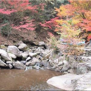 11/22(金)は、紅葉を求めて「三郎の滝」を散策でした(^.-)☆(4)
