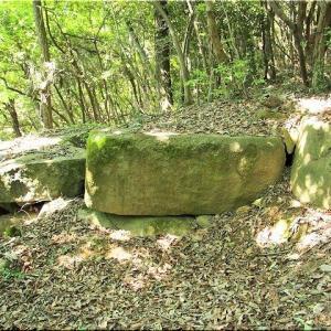 5/23(土)、神辺町上御領「奈良原遺跡」を散策でした(^.-)☆(7)