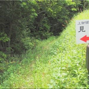 5/30(土)は、神辺町「上御領中組古墳群」を散策でした(^.-)☆(3)