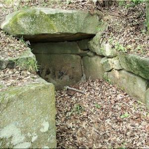 5/30(土)は、神辺町「上御領中組古墳群」を散策でした(^.-)☆(8)