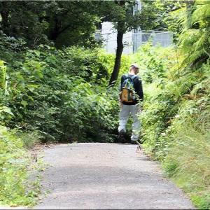 7/21(火)は、笠岡市神島の「栂丸山(つがのまるやま)」を散策でした(4)