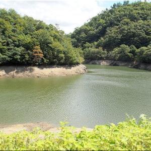 9/6(日)は「滝山渓谷グリーンシャワーロード」を散策でした(^.-)☆(3)