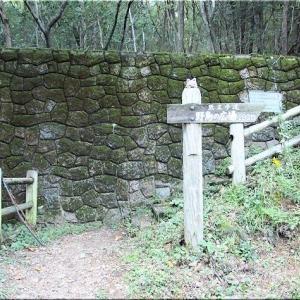 10/18(日)は、午後から蔵王山を散策でした(^.-)☆(8)