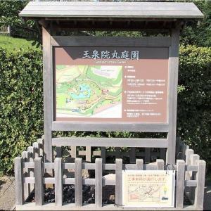 嫁さんの甥の挙式で、8/2~8/4の3日間は金沢行きのGONsanでした(^.-)☆(2)
