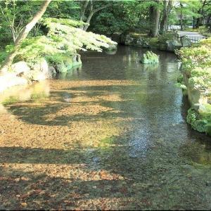 嫁さんの甥の挙式で、8/2~8/4の3日間は金沢行きのGONsanでした(^.-)☆(14)