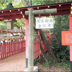 嫁さんの甥の挙式で、8/2~8/4の3日間は金沢行きのGONsanでした(^.-)☆(16)