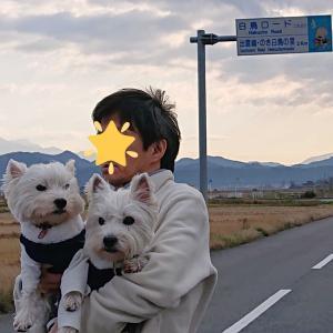 白鳥ロ-ド🦢島根県🦢