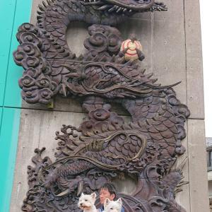 井波✨彫刻の里✨富山県南砺市✨
