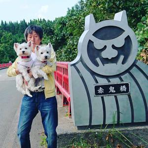 秋田県🌊男鹿半島にGo🚕💨🌞