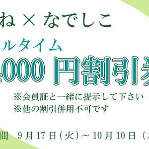 4000円チケットの詳細と割引期間