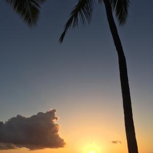 来月は家族でハワイ旅行に!