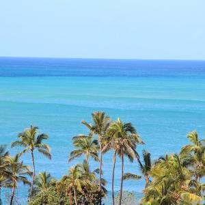 ハワイから無事帰国しました