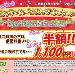 グルーミング部門11.12月のキャンペーンのお知らせ