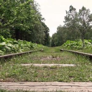 北の大地でなんなと ④ 。。。廃止から34年! 国鉄「士幌線」廃線跡と美しい「コンクリートアーチ橋」を眺めに行きました。