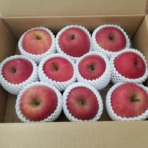 【ふるさと納税】秋田県湯沢市から蜜入りりんごが届きました