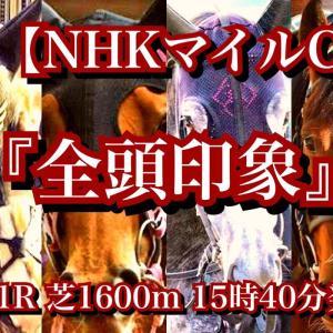 【全頭印象】G1 NHKマイルC!クラシック負け組VS朝日杯上位組の一戦となったが。。。別路線組に面白い馬が一頭いるね!
