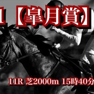 【最終結論】G1 皐月賞!ダービーのステップレースと捉えず、明らかに皐月賞仕様の馬体に仕上がったこの馬を本命に!