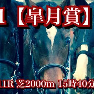 【回顧】G1 皐月賞!メディアの影響で1番人気になってしまった3歳牝馬ファンディーナ、鞍上岩田康誠も認める納得の7着。
