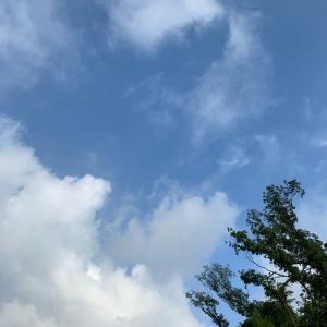 19.08.22のスタバ