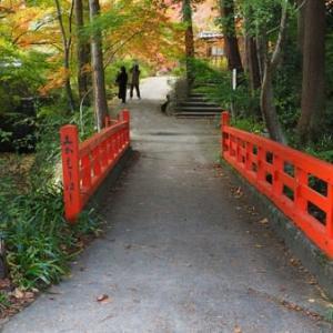 紅葉も見ごろになった神蔵寺(京都・亀岡)
