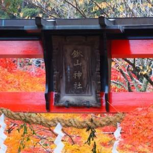 赤く染まる鍬山神社(京都府・亀岡市)