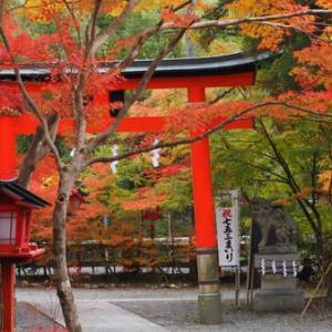赤く染まる鍬山神社②(京都府・亀岡市)