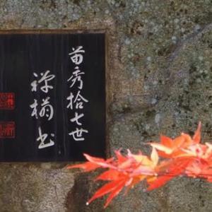 赤く染まる苗秀寺(京都府・亀岡市)