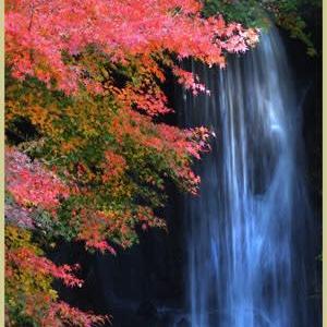 色づくもみじの滝