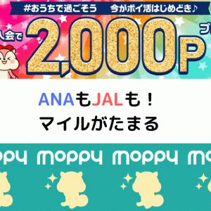 2020年5月モッピー入会キャンペーンで2000ポイント!ANAもJALもモッピーにお任せ
