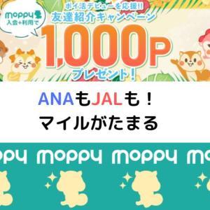 2020年7月モッピー入会キャンペーンで1,000ポイント!ANAもJALもモッピーにお任せ