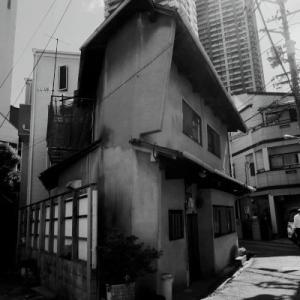 散歩写真(本庄から豊崎辺り 北区)