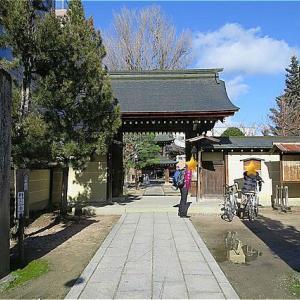 冬の岐阜旅 高山の街をもうちょっとぶらり 飛騨国分寺の三重塔