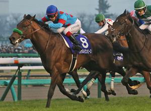 【令和最初の有馬記念2019】過去最高11頭のGⅠ馬が出走予定!超豪華な出走馬の勝ち馬予想してみませんか?