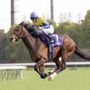 【ディープインパクト追悼】飛ぶように走った史上最強馬!その息子たちは…【7月27日28日2歳馬レース回顧】