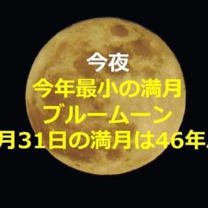 10月31日始まり、はじまりー☺️そして、今日は肌ざむーーーい(((((^^