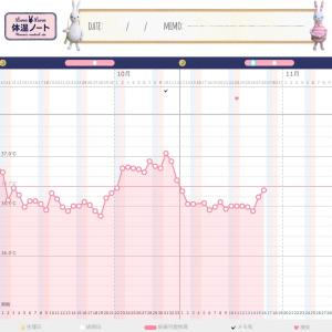 【D16】高温期2日目