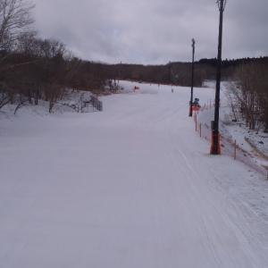 今日はスキー