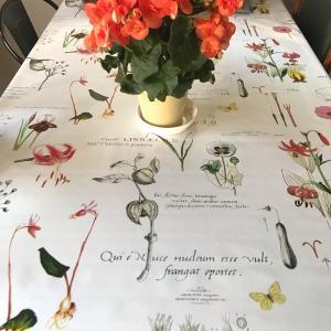 白いテーブルクロス見つけた!